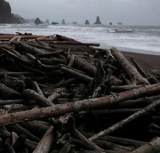 3rd Beach Seastacks
